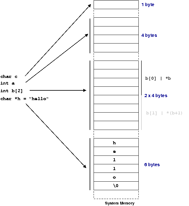 Types and Number Representation